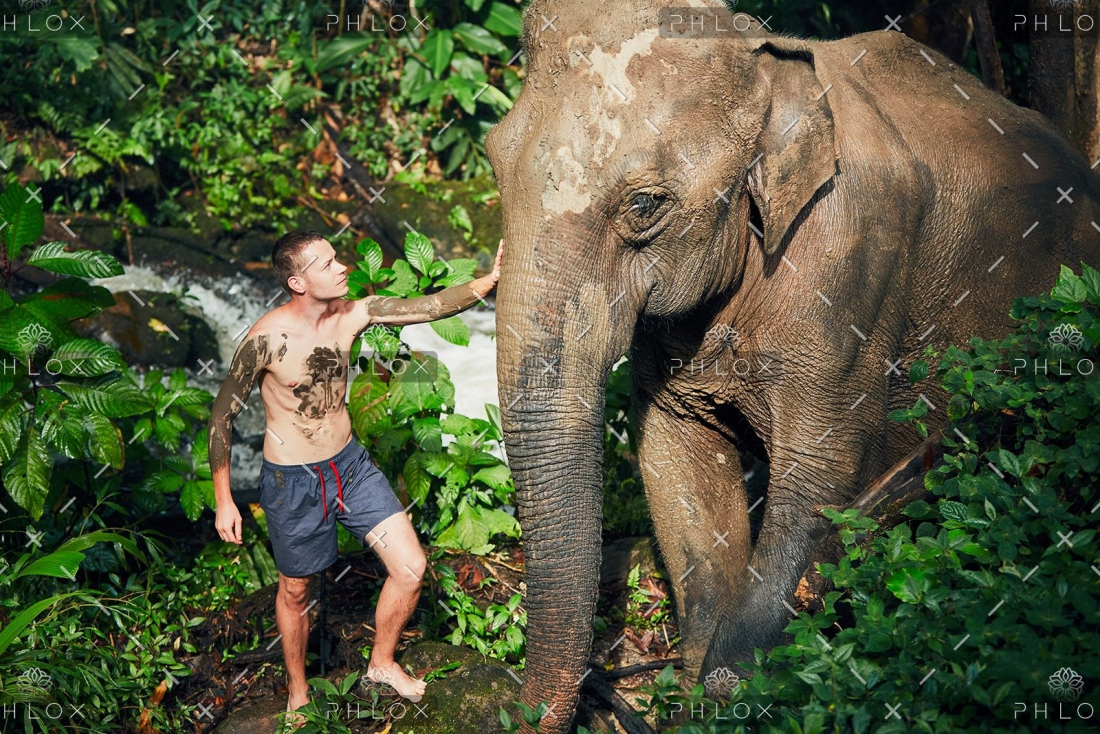 Elephants Are Being Killed for Their Skin